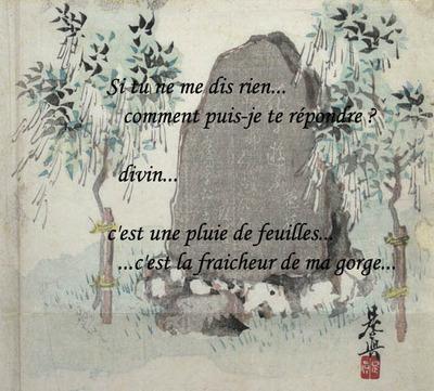 Manteau_de_pluie_du_singe